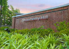 Strawberry Hill: